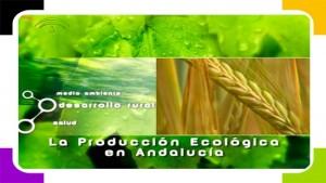 Agricultura ecológica_550x310