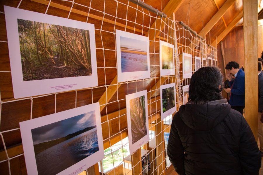 Exposición itinerante_Achao_35