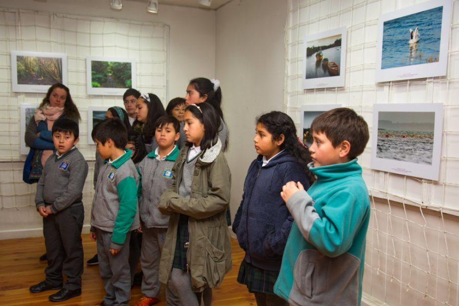Exposición_Ancud-10