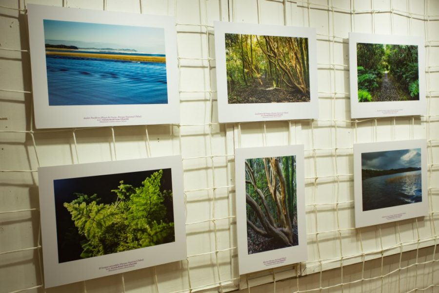 Exposición fotográfica en la Casa de la Cultura de Ancud