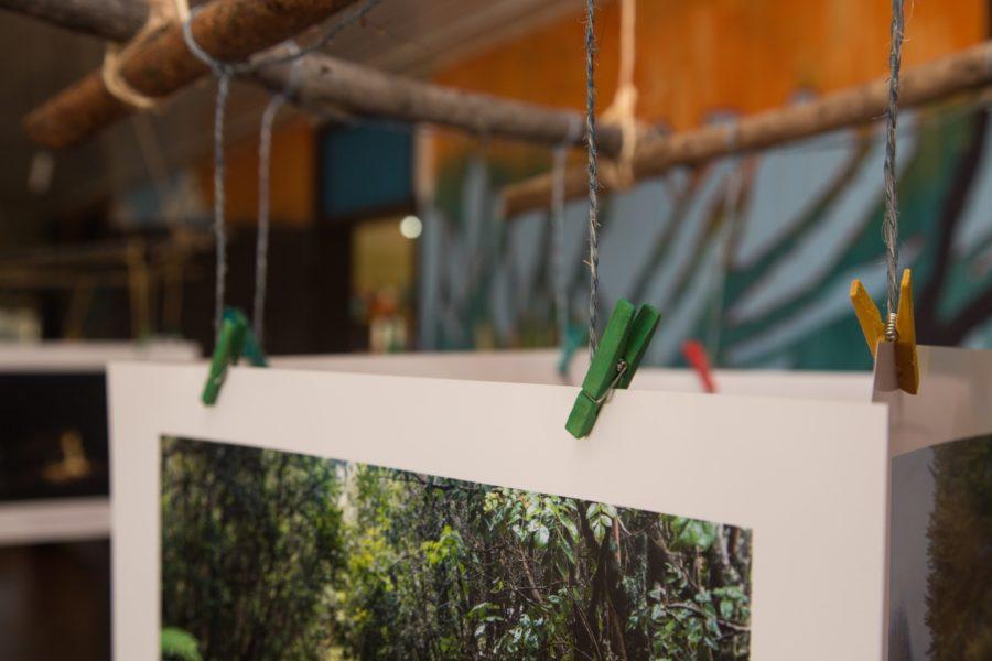 Exposición_Cucao-11