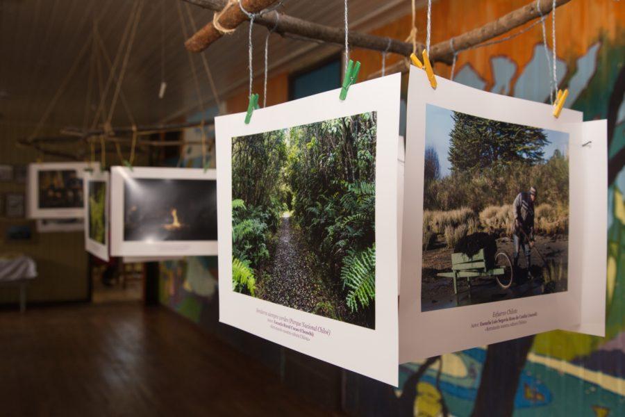 Exposición_Cucao-13