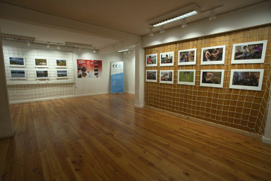 Inauguración exposición_Casa de la Cultura de Ancud-5