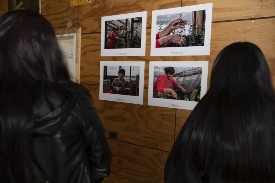Inauguración exposición_Centro Cultural Quellón-45